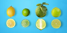 El limón: variedades, características y usos