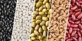 Las variedades de frejoles y cómo prepararlas
