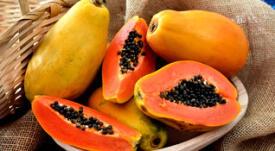 Todo sobre la papaya y sus beneficios