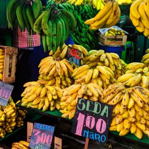 7 variedades de plátanos peruanos