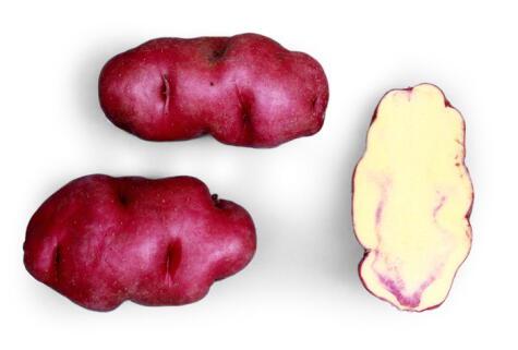 Esta variedad de papa nativa es muy usada en las pachamancas. Tiene ligera pigmentación roja. ©️Centro Internacional de la Papa, Lima, Peru</div>