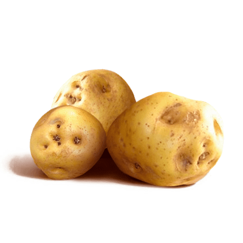 La papa amarilla es la preferida de las mesas peruanas y la mejor para la causa y el estofado.