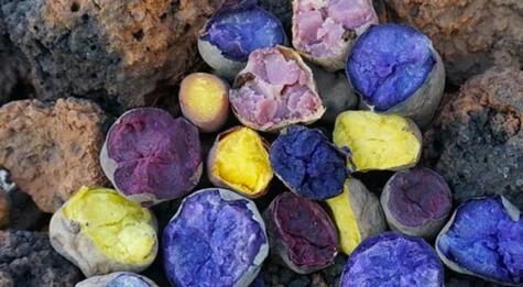 Así lucen las papas nativas de Manuel en una huatia lñuego de la cosecha.</div>