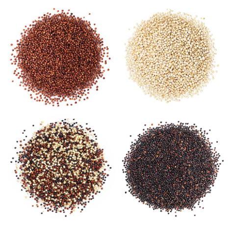Variedades de quinua: la roja y la negra son las que más saponina tienen.