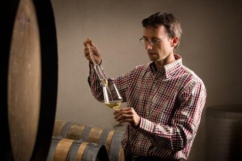 El enólogo tiene que tomar muchas decisiones para obtener el vino que se imagina. No hay una sola forma de hacer vino.