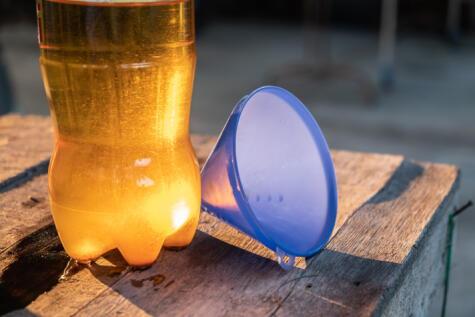 Si vas a usar una botella transparente, mantenla lejos de los rayos solares.