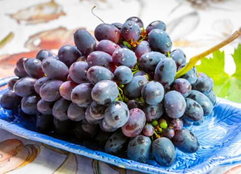 Las mejores uvas son las que estén más bonitas y sabrosas.
