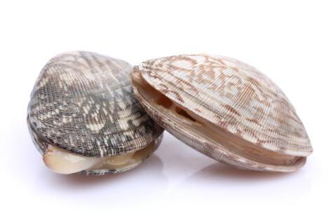Los mariscos con concha es mejor si están vivos, o reaccionan al tocarlos.