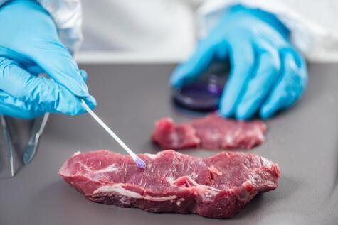 La carne se puede contaminar en los lugares de beneficio o en su manipulación en cocina.