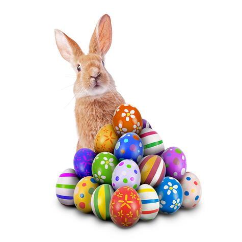 Los huevos y el conejo, símbolos de la reproducción y la fertilidad.