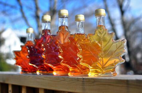 La miel de maple se produce con este árbol, símbolo de Canadá. El tono de color depende del momento en que se extrayó su savia.