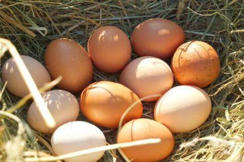 Los huevos de corral no son homogéneos; algunos llegan sucios, pero son un excelente producto.
