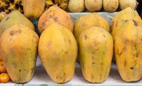 La variedad criolla es la más producida en nuestro país (90%).